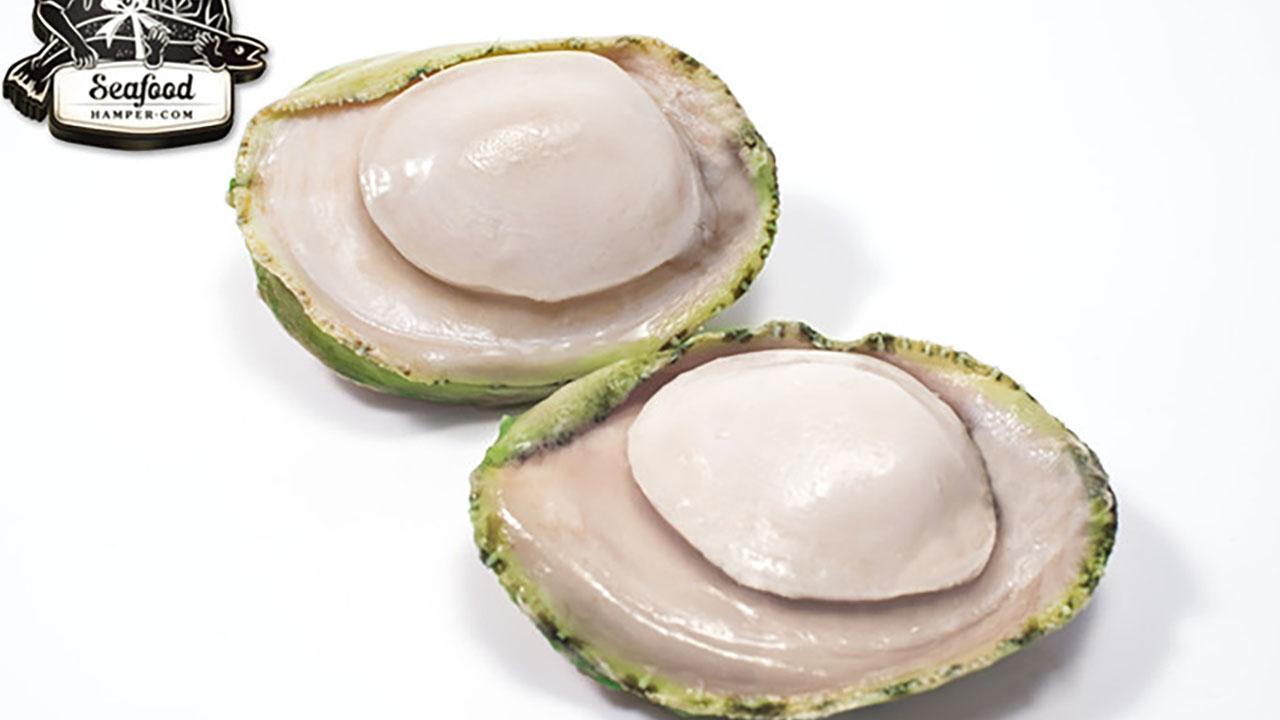 Frozen Aust Green Lip Abalone - 300g/pc
